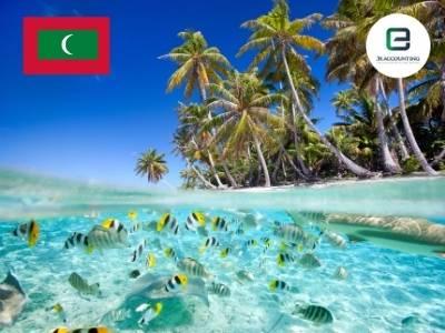 Maldives Company Formation