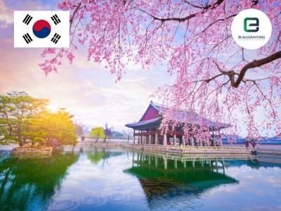 South Korea Company Formation